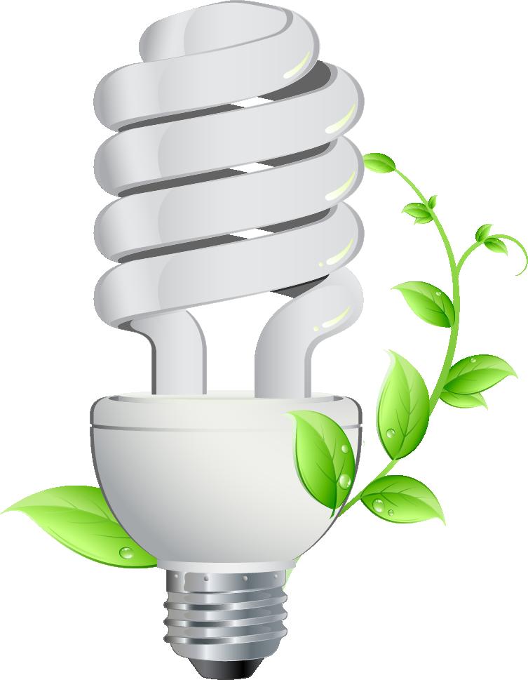 روشنایی مصنوعی گیاهان با لامپ CFL