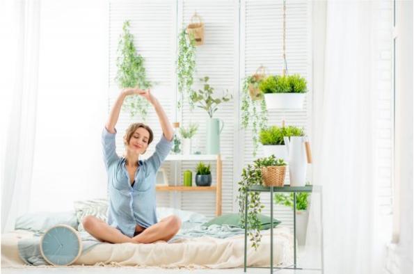 تأثیر گیاهان بر روحیه